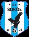 Sokół logo